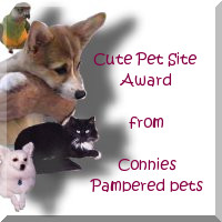 Connies Pet Award